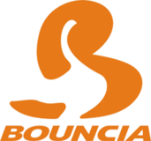 Professional Manufacturing Of Water Inflatables From Bouncia
